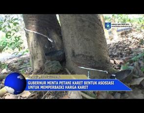 Embedded thumbnail for Gubernur Minta Petani Karet Bentuk Asosiasi